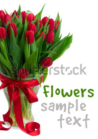bouquet of yellow, purple and red tulips Stock photo © neirfy
