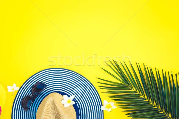 Yaz manzara şapka yeşil palmiye yaprağı sarı Stok fotoğraf © neirfy
