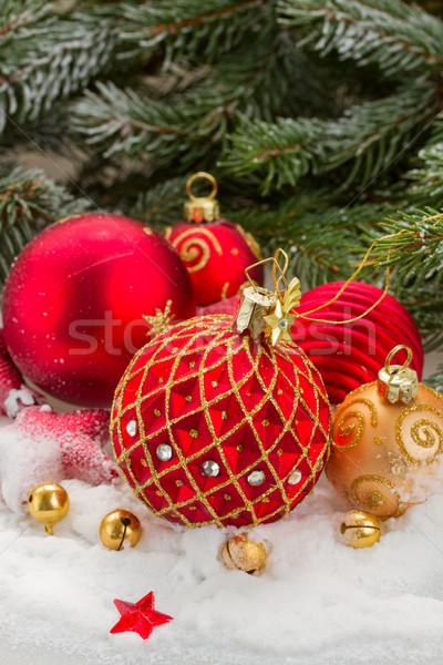 red christmas ball under evergreen tree Stock photo © neirfy