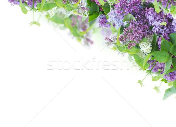 Orgona váza köteg virágok fehér húsvét Stock fotó © neirfy