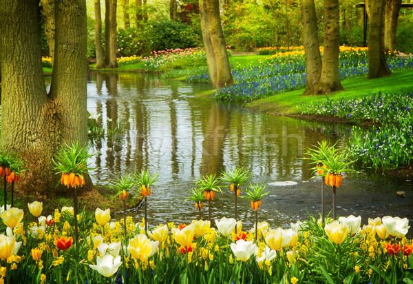 Bahar bahçe Hollanda renkli nehir manzara Stok fotoğraf © neirfy