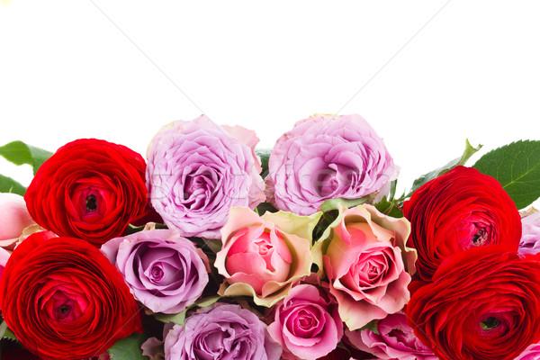 Bukiet świeże róż granicy Wazon odizolowany Zdjęcia stock © neirfy