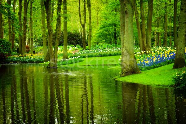 Primavera giardino colorato fiume aiuola Foto d'archivio © neirfy