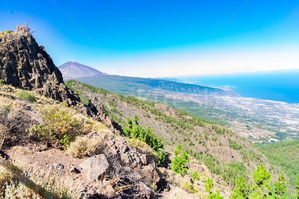 volcan Teide, Tenerife island Stock photo © neirfy