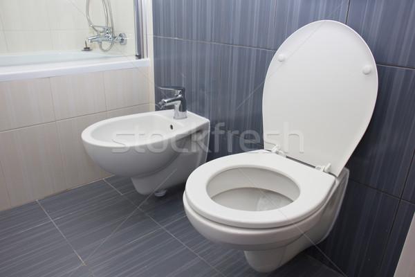 Toilet in the bathroom Stock photo © neirfy