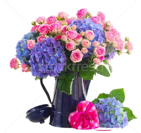 bouquet of fresh pink roses and blue hortensia flowers Stock photo © neirfy