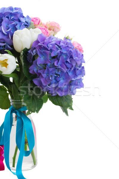 posy   of white tulips, pink roses and blue hortensia flowers Stock photo © neirfy