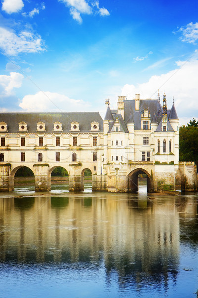 Chenonceau castle, France Stock photo © neirfy