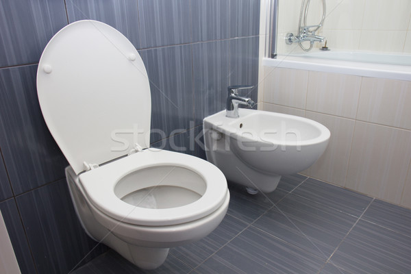 Moder luxury bathroom Stock photo © neirfy