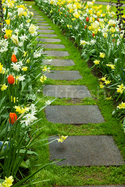 Stone walk way winding in garden Stock photo © neirfy