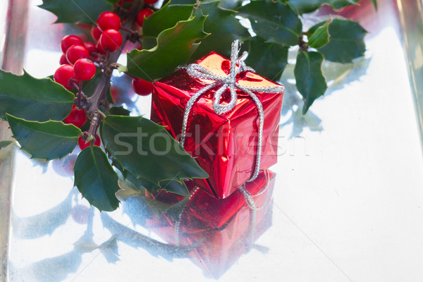 Holly  green leaves and red berries Stock photo © neirfy