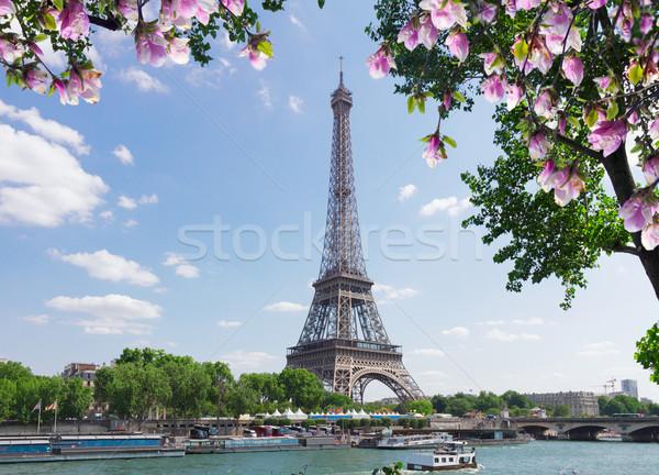 Eiffel tour rivier boom voorjaar magnolia Stockfoto © neirfy