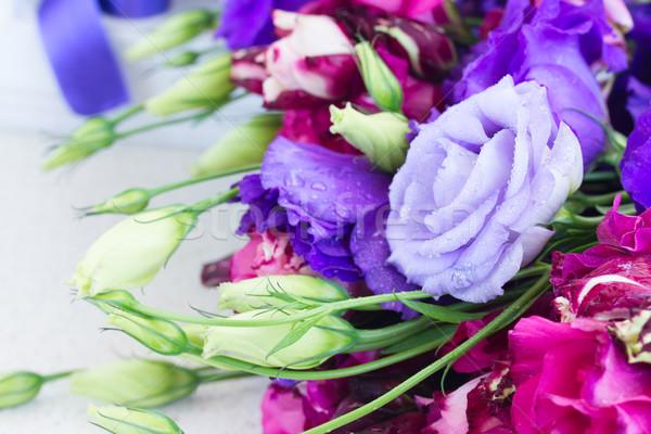 Mor leylak rengi çiçekler mavi tablo doğa Stok fotoğraf © neirfy