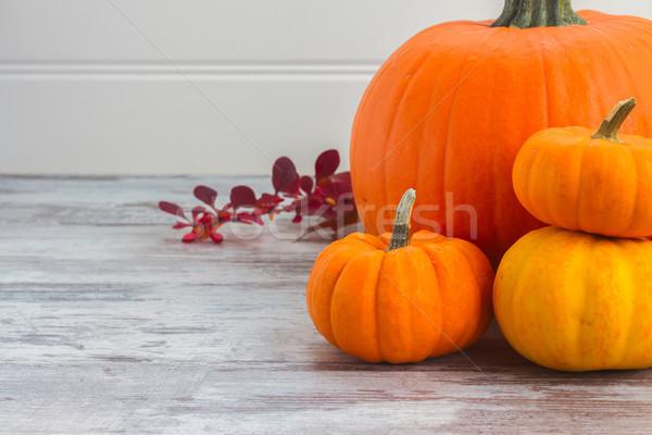 Zucche tavola maturo arancione caduta foglie Foto d'archivio © neirfy