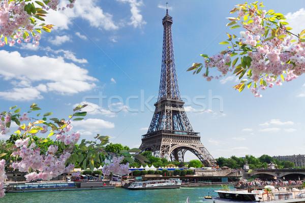 Eiffel tur nehir bahar gün Paris Stok fotoğraf © neirfy