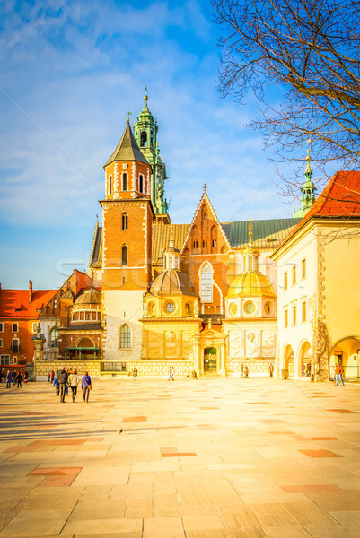 Heuvel krakow Polen koninklijk basiliek kathedraal Stockfoto © neirfy