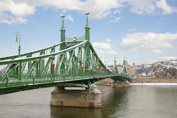 Puente libertad danubio Budapest río Hungría Foto stock © neirfy
