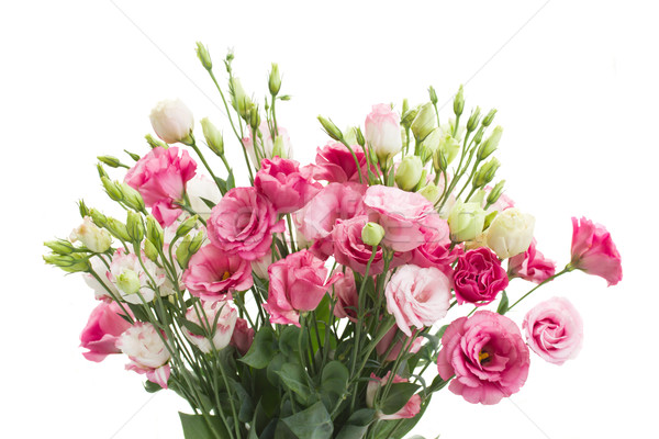 bouquet of  pink eustoma flowers Stock photo © neirfy