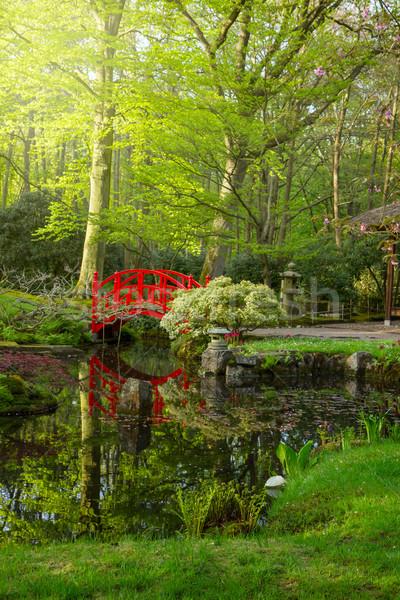 日本語 庭園 橋 赤 ツリー ストックフォト © neirfy
