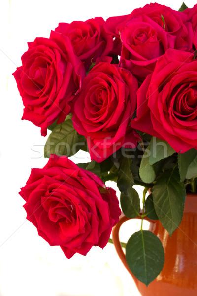 Сток-фото: темно · розовый · роз · Розовые · розы · цветы