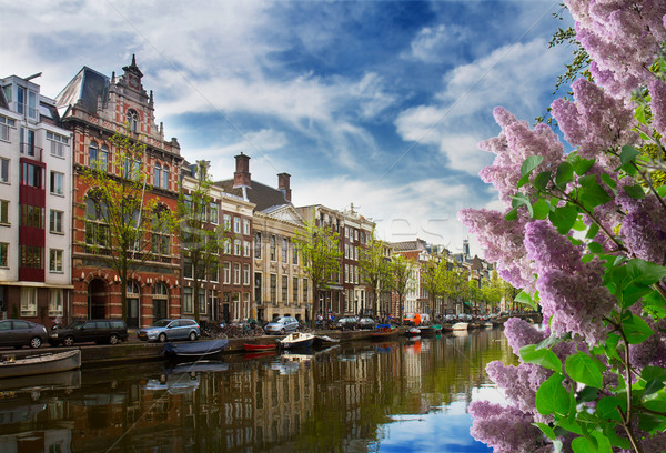 Une Amsterdam holland vieille ville vert arbres Photo stock © neirfy