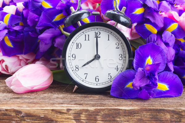 Spring time concept Stock photo © neirfy