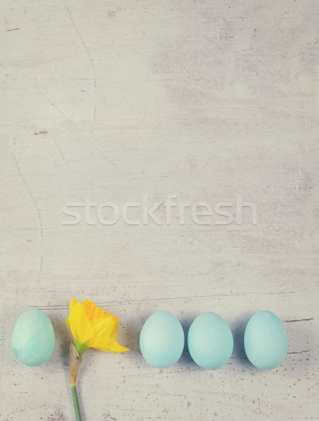 Azul ovos abrótea amarelo Foto stock © neirfy