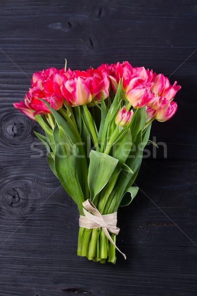 Pink tulips on black Stock photo © neirfy