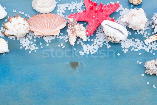 border os sea star and shells Stock photo © neirfy