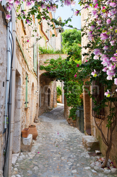 Mooie oude binnenstad steen straat voorjaar dag Stockfoto © neirfy
