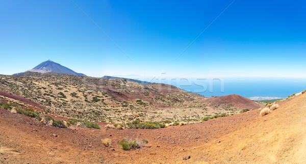 Tenerife eiland panorama park Spanje hemel Stockfoto © neirfy