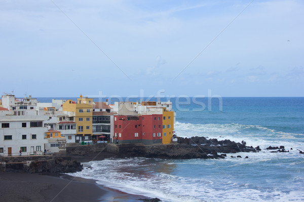coast in  Puerto de la Cruz, Tenerife, Spain Stock photo © neirfy
