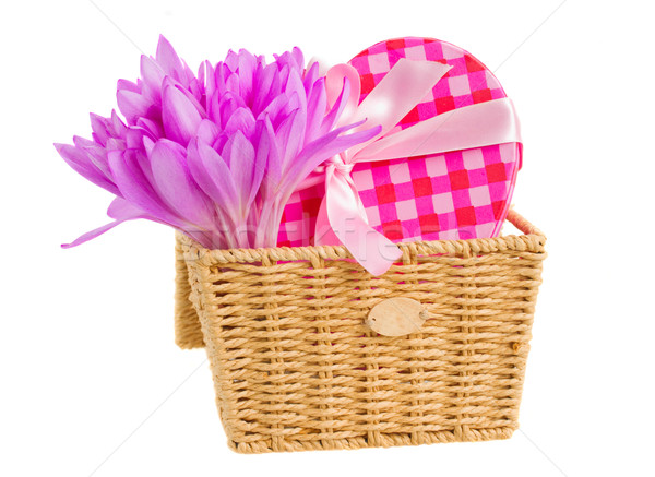 basket with meadow saffron and gift box Stock photo © neirfy