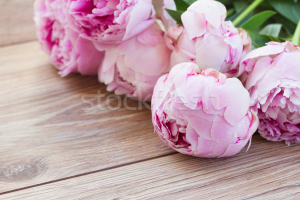pink peonies Stock photo © neirfy