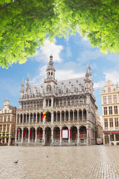 Roi Brüsszel nyár nap Belgium város Stock fotó © neirfy