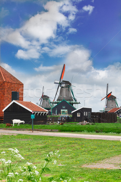 dutch windmills over  river Stock photo © neirfy