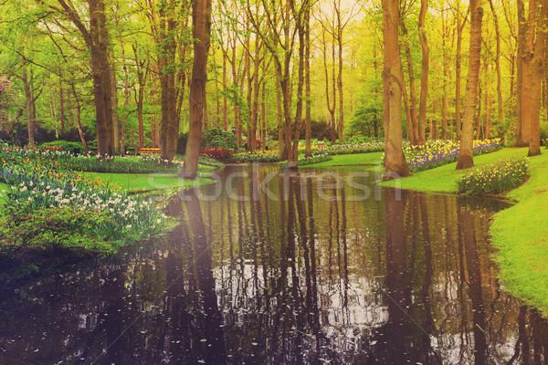 Primavera giardino colorato fiume erba aiuola Foto d'archivio © neirfy