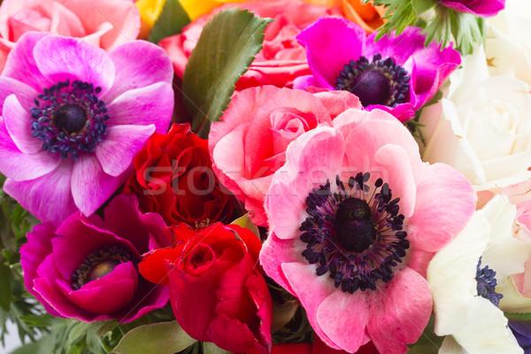 Foto stock: Flores · pedra · fresco · colorido · rosa · páscoa