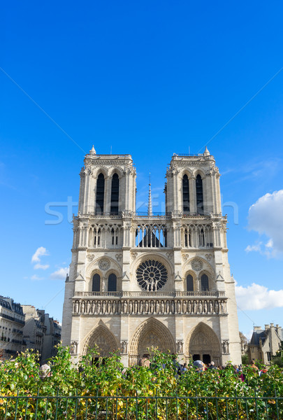 facade of Notre Dame cathedral, Paris, France Stock photo © neirfy