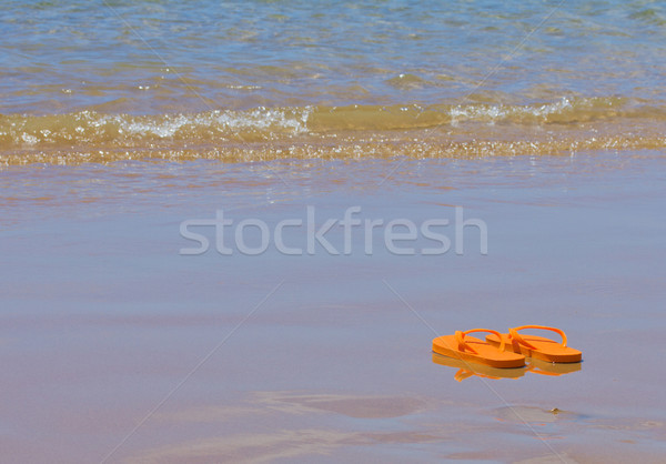 flip flops by the sea shore Stock photo © neirfy