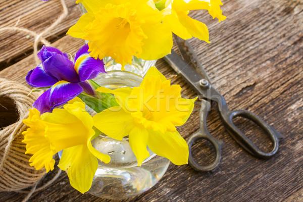 Pascua narciso amarillo azul iris mesa de madera Foto stock © neirfy