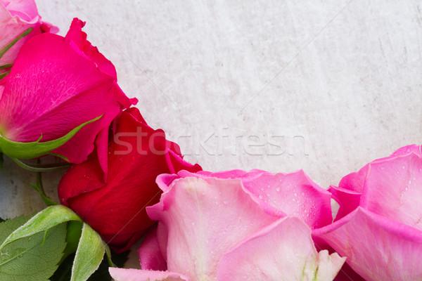 Pink fresh roses Stock photo © neirfy