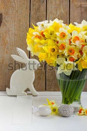 Stockfoto: Vers · voorjaar · narcissen · licht · donkere · Geel