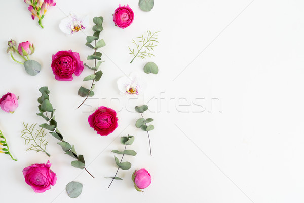Stok fotoğraf: çiçekler · sınır · kurutulmuş · yaprakları · beyaz · üst
