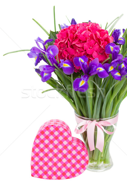 hortensia and iris flowers with gift box Stock photo © neirfy