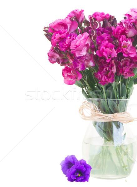 Leylak rengi çiçekler vazo yalıtılmış Stok fotoğraf © neirfy