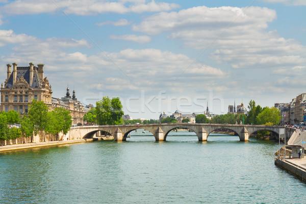 королевский Париж известный реке Франция дома Сток-фото © neirfy