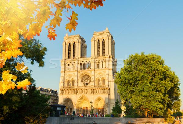 Catedral de Notre Dame Paris França fachada cair dia Foto stock © neirfy