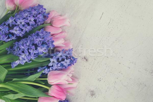 Lale pembe mavi çiçekler beyaz ahşap masa Stok fotoğraf © neirfy