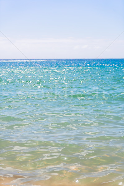 abstract blured sea background Stock photo © neirfy